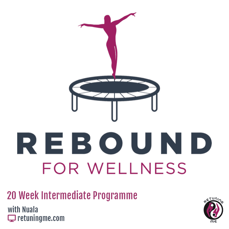 Rebound For Wellness Intermediate Programme makes exercising Easy with Nuala O Connor