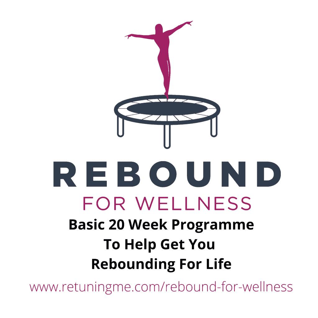 Rebound 4 Wellness 20 Week Programme